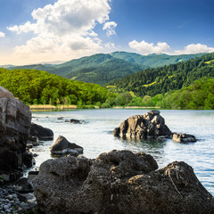 lake shore with stones near forest on mountain