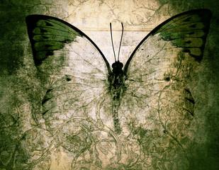 Acrylic Prints Butterflies in Grunge butterfly