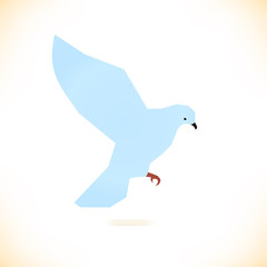 Vector isolated bird. Pigeon, dove