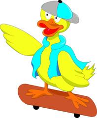 Skater Duck