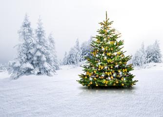 bilder und videos suchen weihnachtswald. Black Bedroom Furniture Sets. Home Design Ideas