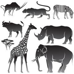 Vector Set of African animals.