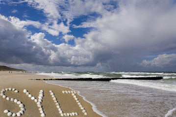 Wall Mural - Strand von Sylt mit Muscheln