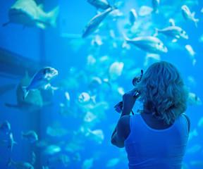 Woman doing photos of fish in aquarium.