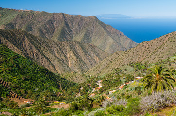 Palm trees in mountain valley, Agulo, La Gomera, Canary Islands