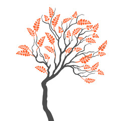 tree with leaves on white background
