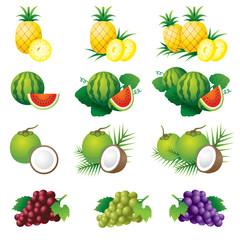 Pineapple, Watermelon, Coconut, Grape, Illustrate