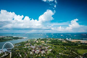 Foto op Plexiglas Singapore Garden by the sea, Singapore