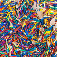 Foto op Plexiglas Paradijsvogel Close up colorful pencil shavings for background