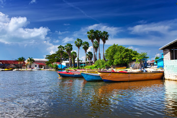 Wall Murals Caribbean Jamaica. National boats on the Black river.