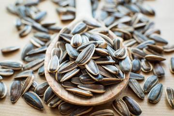 Photo sur Plexiglas Tournesol sunflower seeds