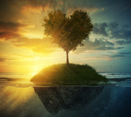 Fototapete - Tree heart in ocean