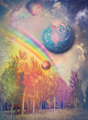 Canvas Prints Imagination Enchanted wood with rainbow