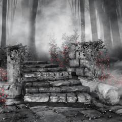 Czarno-biała sceneria ze schodami i czerwonymi różami