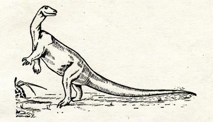 Old reconstruction of iguanodon