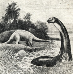 Restoration of Apatosaurus excelsus by Charles R. Knight, 1897