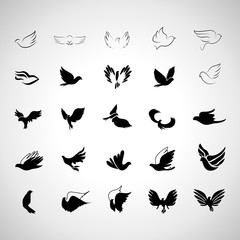 Bird Set - Isolated On Gray Background - Vector Illustration, Graphic Design, Editable For Your Design