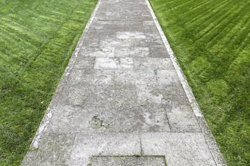 Concrete road in the grass