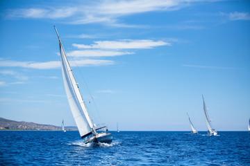Sailing boats during a sea race. Yacht. Sailing.