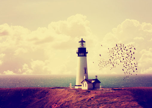 a lighthouse with a flock of birds with instagram filter