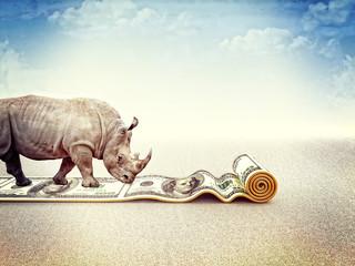 Photo sur Plexiglas Rhino strong dollar
