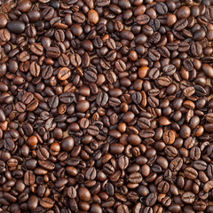 roasted coffee beans, used as a background