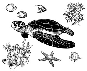 Vector icon set with sea animals