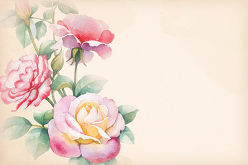 Watercolor illustration of rose flower. Perfect for greeting car