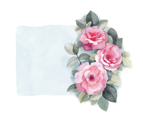 Watercolor illustration of wild rose flower