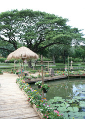 bamboo bridge with flower in garden