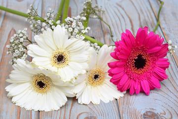 Witte gerbera's met roze op oud hout