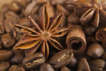grains of coffee and seasoning