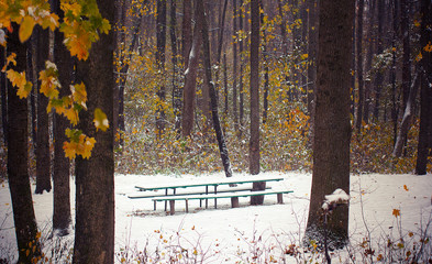 first snow in autumn park covered a bench