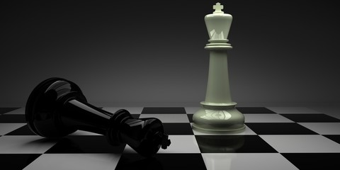 Chess. Checkmate. Victory white