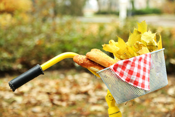 Beautiful yellow bicycle in autumn park with tasty bread and