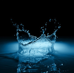 Water crown splash in black