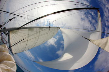 Foto op Aluminium Zeilen background for travel - sails full of wind