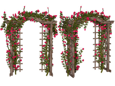 Romantic arbor with  pink  roses
