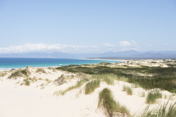 Scenic coast Bay of Fires Tasmania, Australia