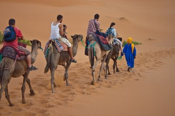 Camel caravan with tourists