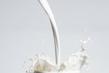 Photo sur Toile Lait, Milk-shake Milk Splash