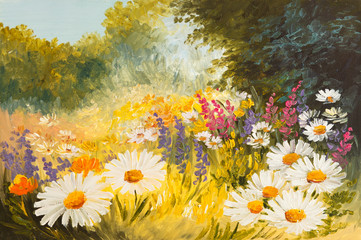 Oil Painting - field of daisies. colorfull art drawing - fototapety na wymiar