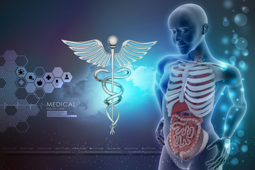 human anatomy and caduceus sign