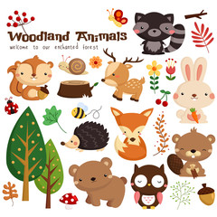 Animal woodland vector set