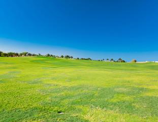 Heavenly Green Fields