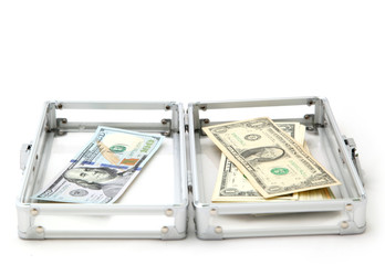 Case with money