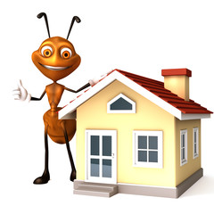Ant with house