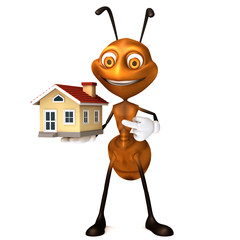 Ant showing house