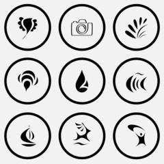 bird, camera, plant, bee, drop, fish, ship, deer, abstract littl