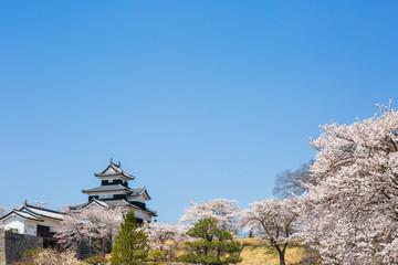 Shirakawa Komine Castle